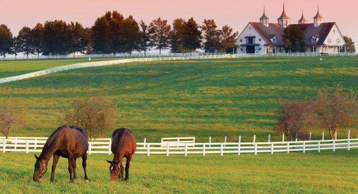 Kentucky-Horse-Farm