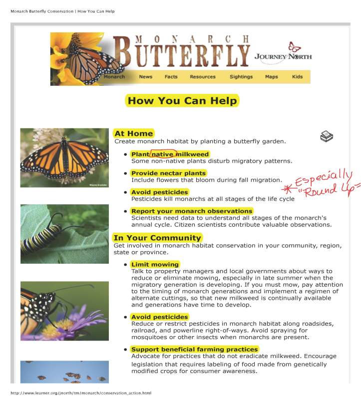 Monarch Butterfly Conservation | How You Can Help_Page_1