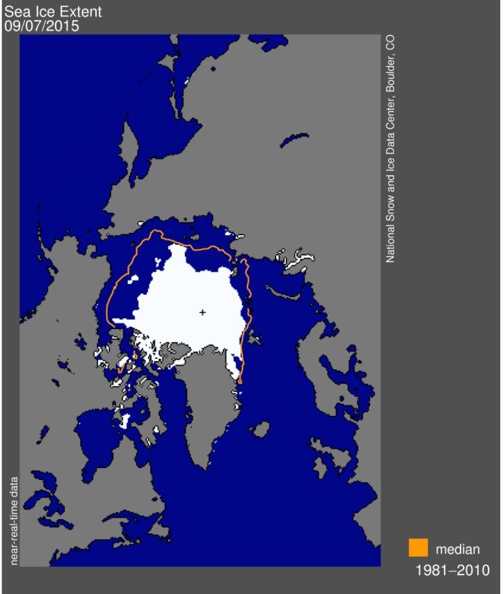 Arctic daily