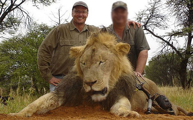 walter-palmer-lion-NOT-Cecil